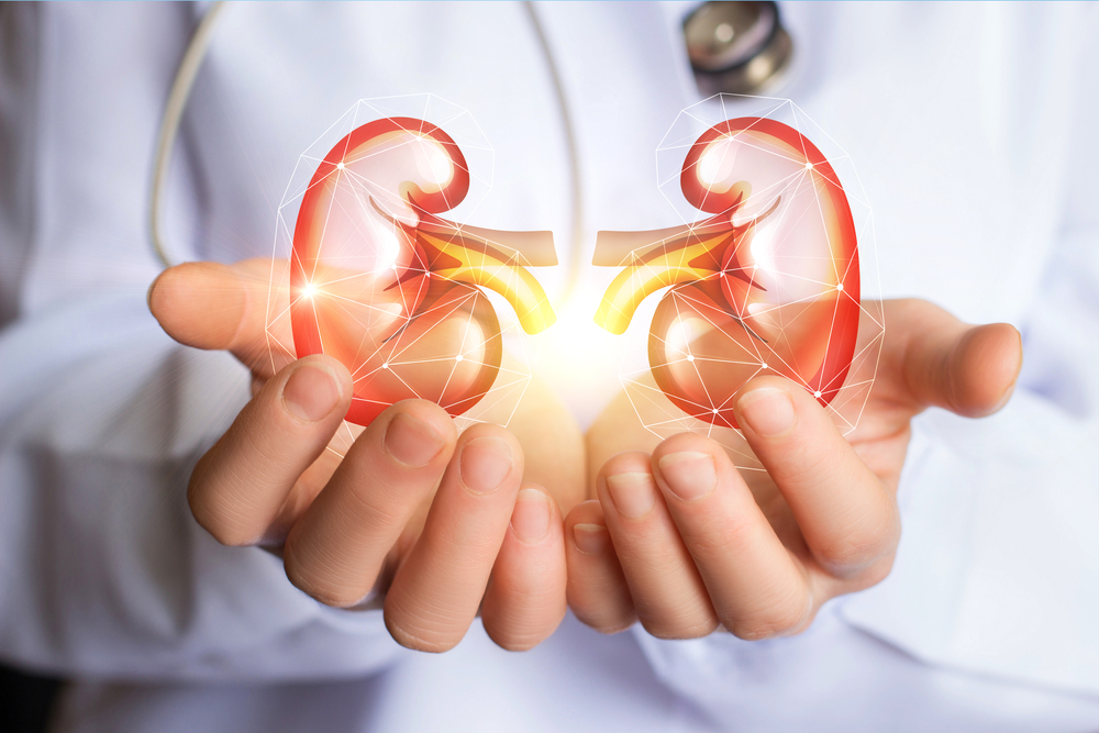 No Kidney Benefit in Type 1 From Reducing Uric Acid Levels: Study